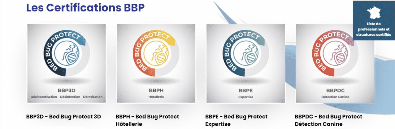 inelp certification bbp