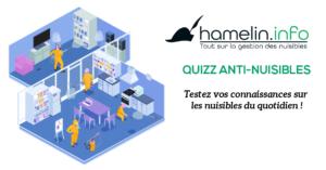 Image d'applicateurs qui nettoient une maison avec logo Hamelin.info et mots quizz anti-nuisibles
