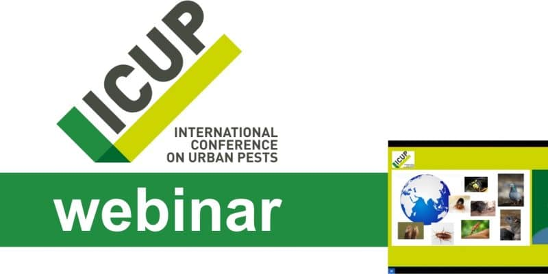 Logo ICUP webinar
