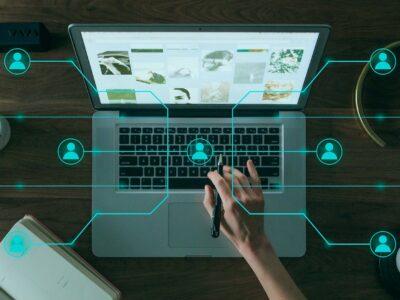 communication digitale dératisation désinsectisation