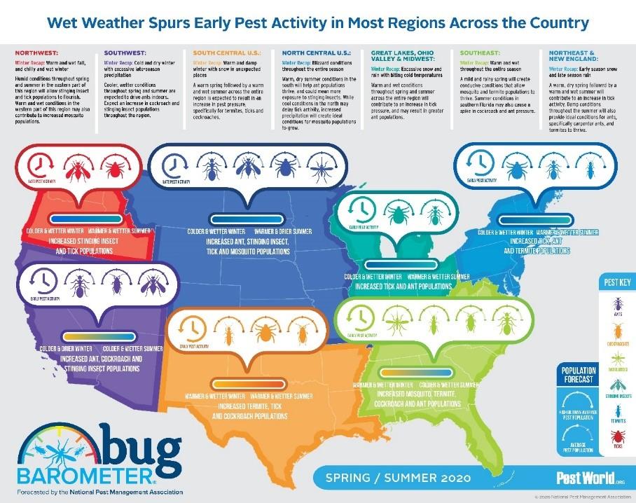 Bug Barometer® printemps 2020