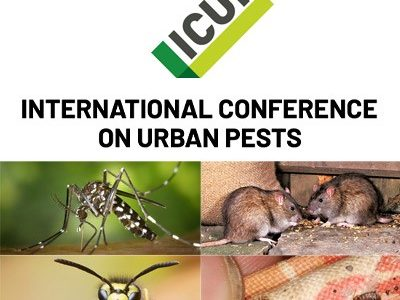 ICUP logo avec photo de souris, frelon, moustique et cafard
