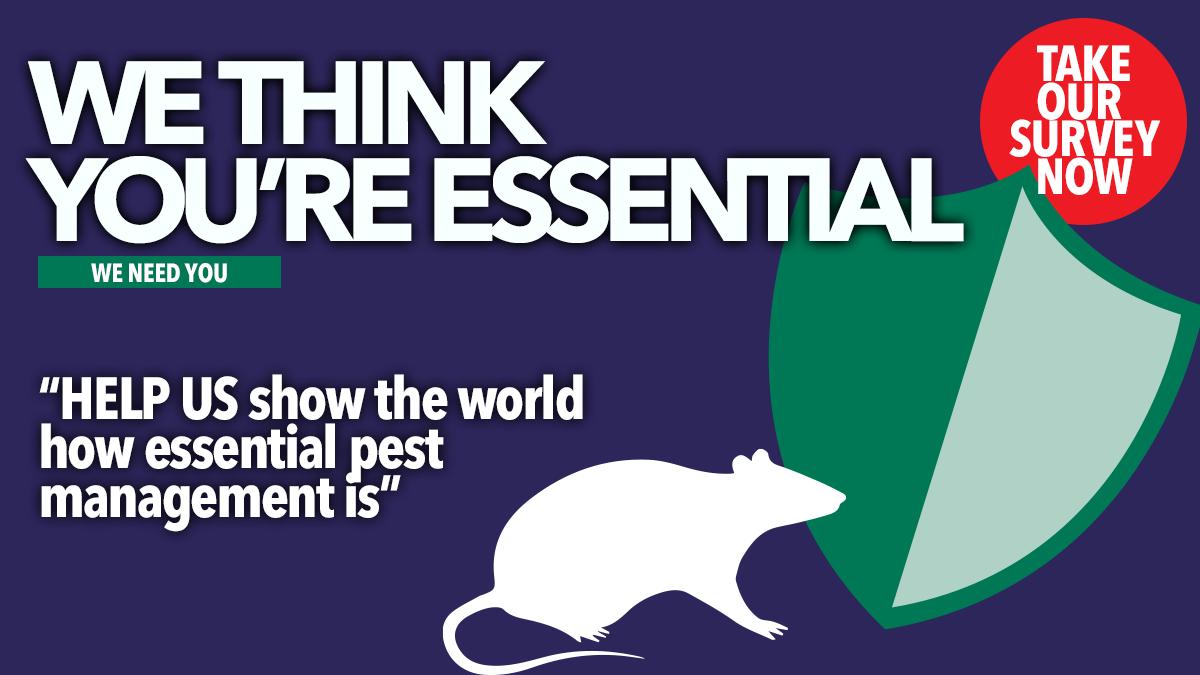 Affiche avec texte et un dessin de rat